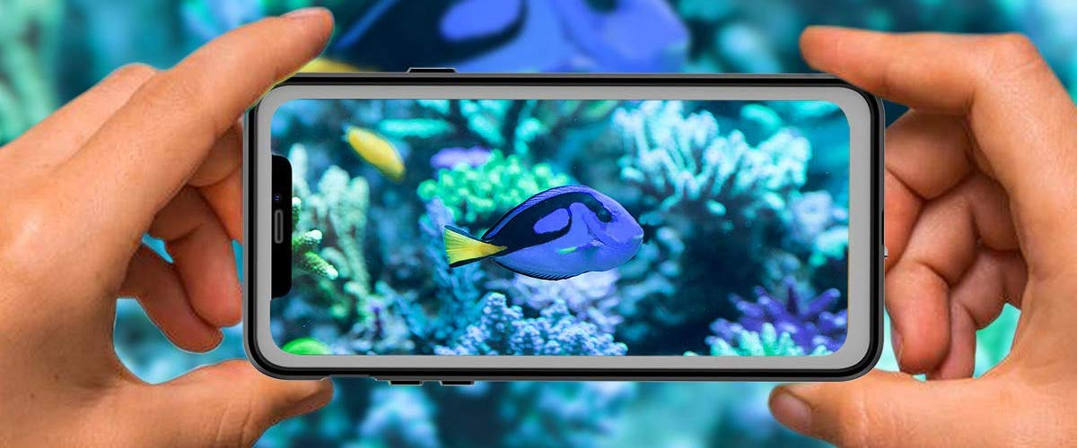 12 Best iPhone 11 Waterproof Cases